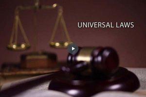 Module 7 - Universal Laws